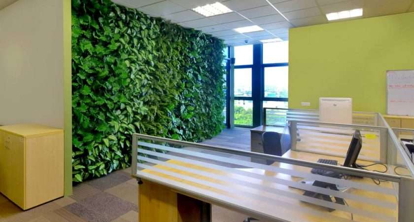 Office Feature Wall Using Artificial Plants Greenturf Asia