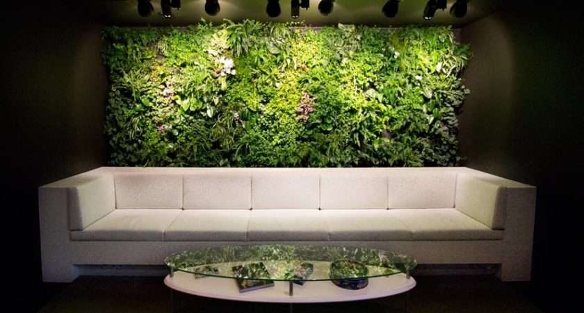 Office Waiting Room Verical Garden Feature Wall Couch Olpos Design