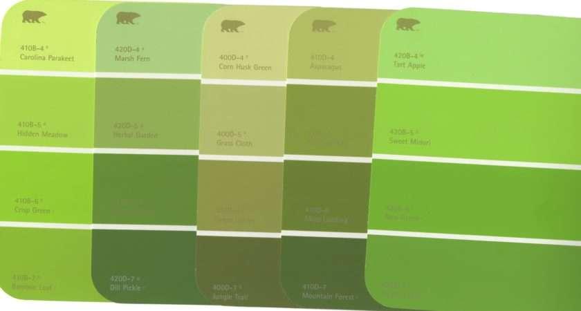 Olive Green Color Palette Sour Apple