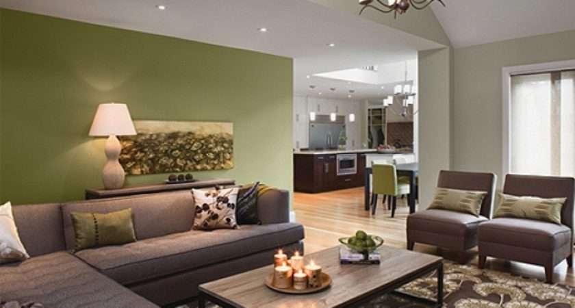 Olive Green Walls Living Room Sofa