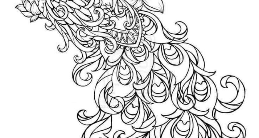 Outstanding Classy Sketch Paisley Pattern