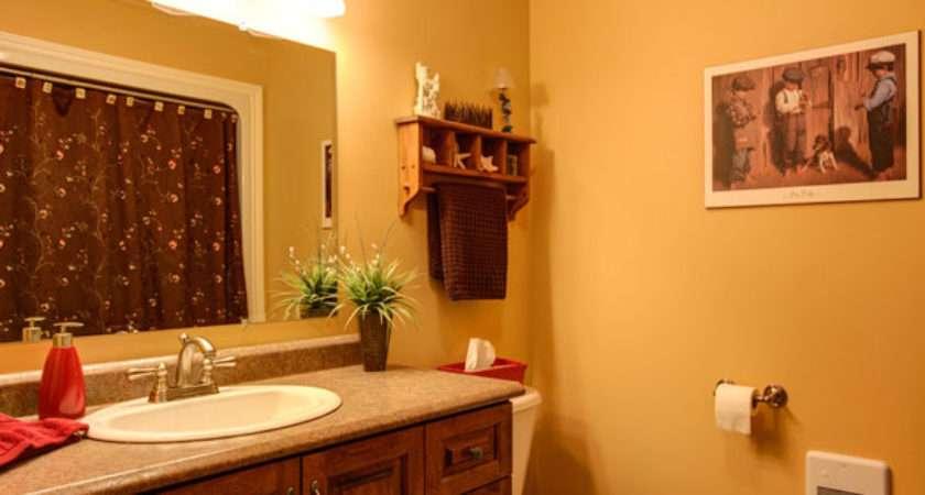 Painting Best Paint Color Bathroom Walls