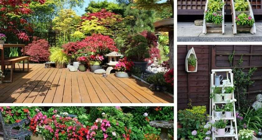 Patio Potted Plant Flower Ideas Creative