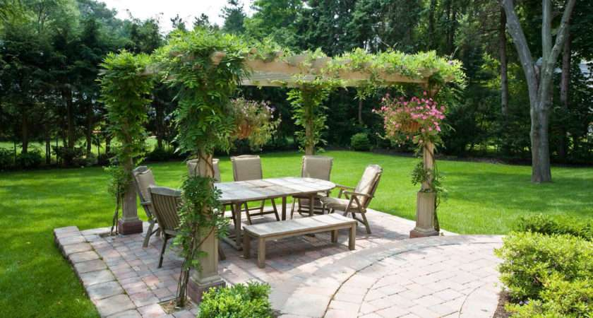 Pergola Plants Guide Shade Enhance Your Outdoor Space