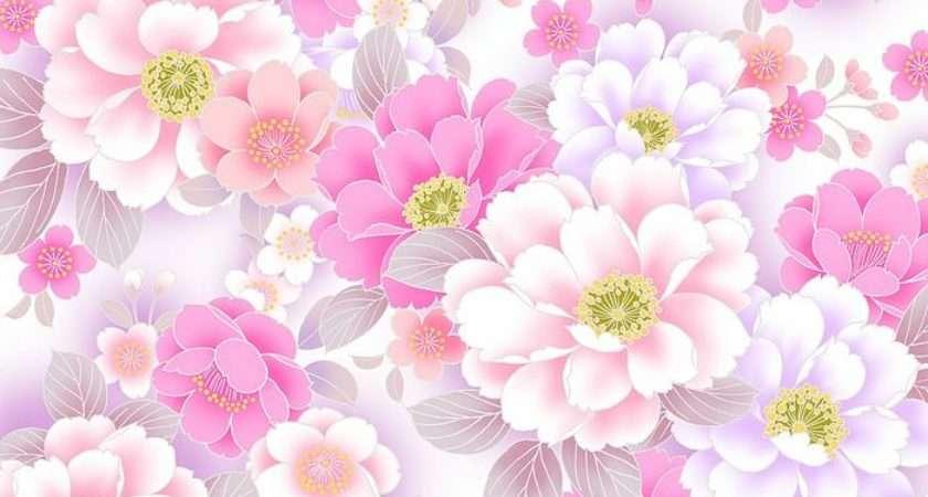 Pink Poeny Flowers Sweet Flowery Wallcoo