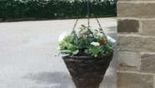 Plant Hanging Baskets Garden Features Ideas