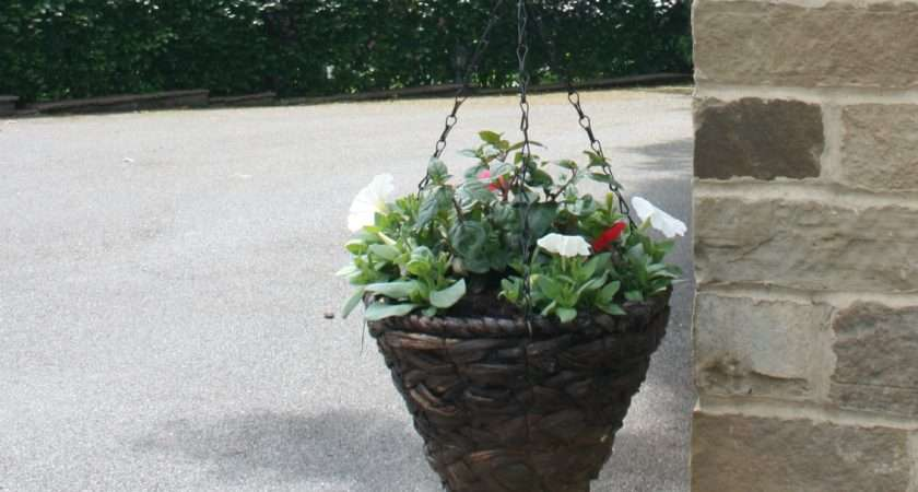 Plant Hanging Baskets Garden Features Ideas