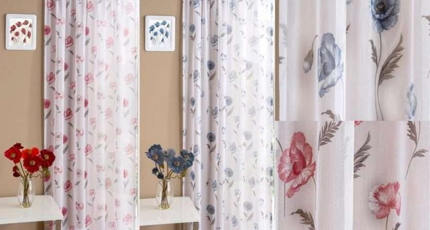 Poppy Modern Voile Curtain Panel Clearance Last