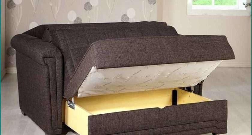 Pros Cons Twin Sofa Bed Decoras Jchansdesigns