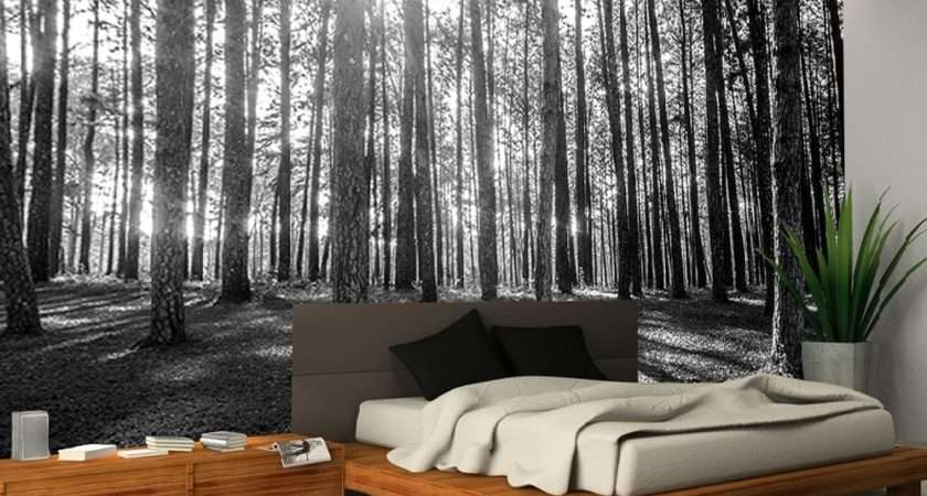 Rainbow Black White Woodland Forest Mural Giant
