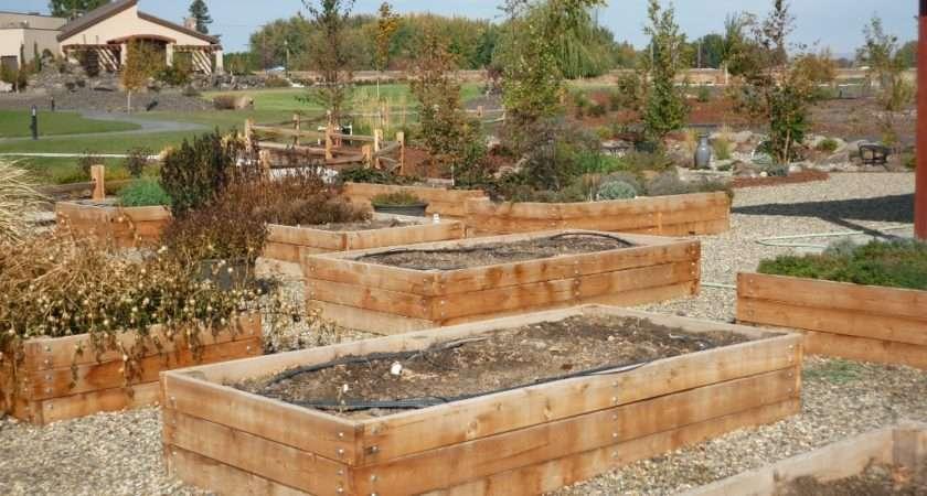 Raised Bed Gardening Ideas Adventures Diy