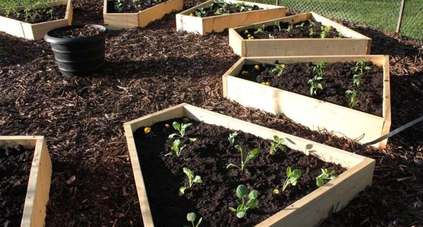 Raised Beds Medicine Wheel Garden Cabinorganic