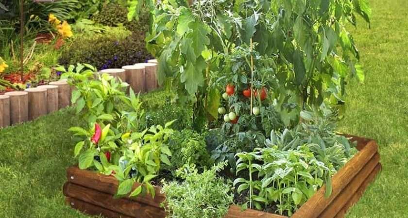 Raised Garden Beds Build Install Them