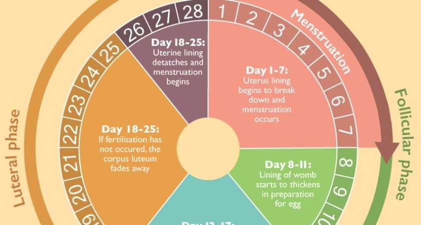 Relieve Pms Period Cramps Fix