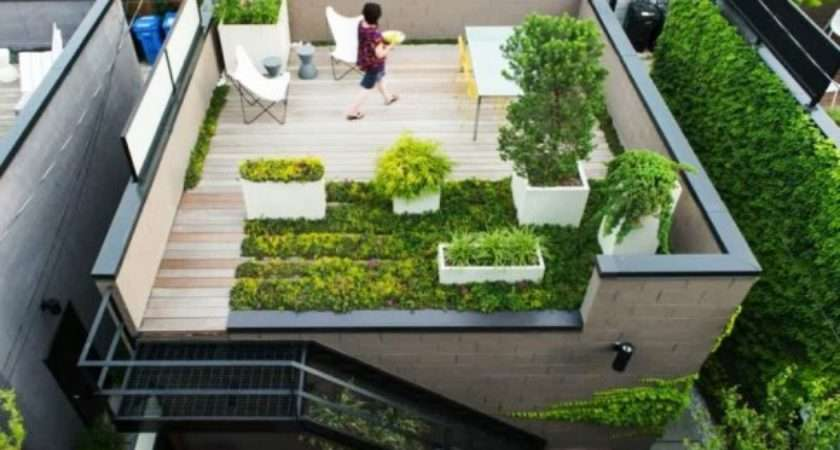 Roof Gardens All Need Know Cape Contours