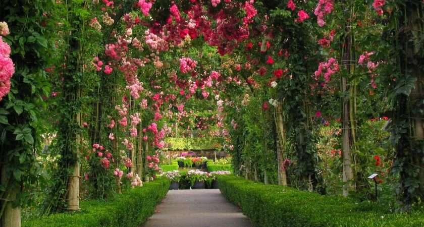 Rose Garden Cave