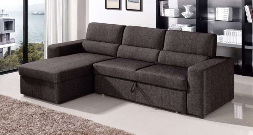 Sectional Sofa Pull Out Bed Has One Best Kind Other