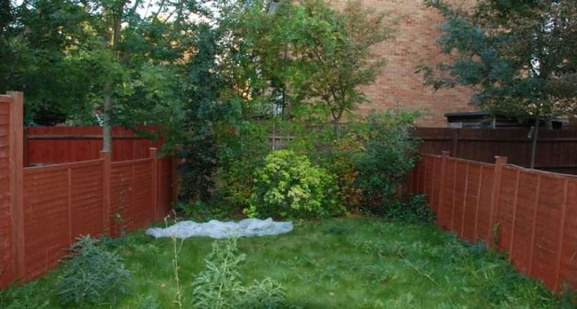 Small Back Garden Design Ideas Designs Nice