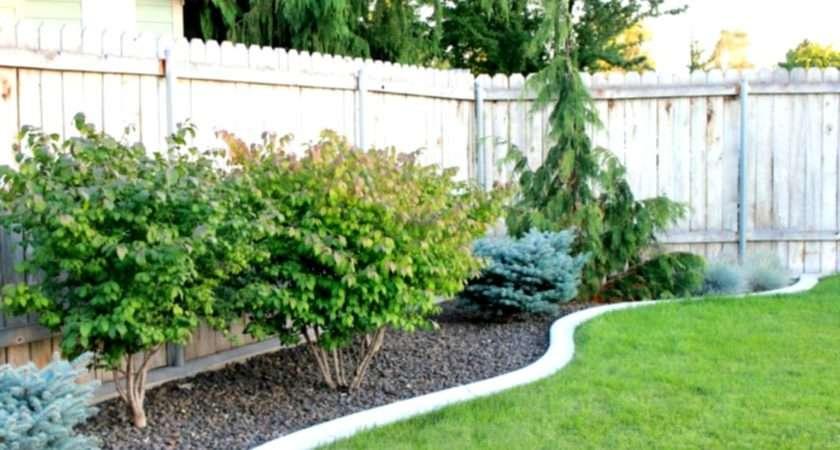 Small Garden Design Ideas Budget Collection