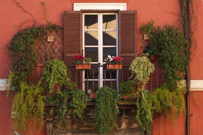 Small Gardens Balconies Decks Gardening Tips Garden Guides