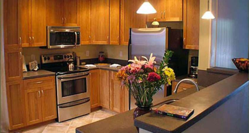 Small Shaped Kitchen Design Ideas Home