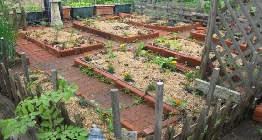 Small Space Vegetable Gardening New England Dream