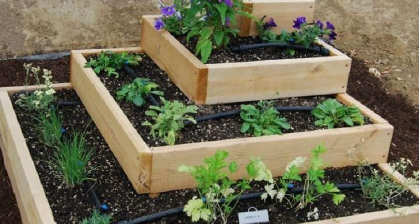 Small Vegetable Garden Ideas Limited Space Margarite