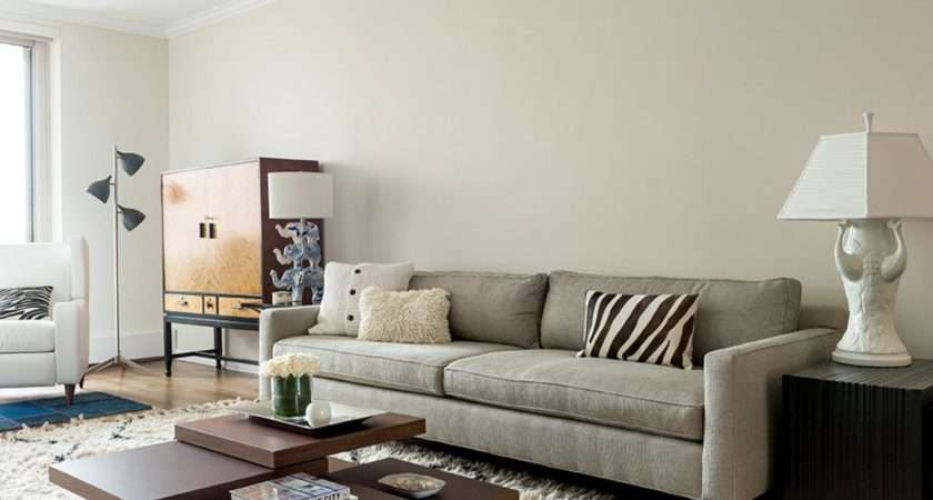 Stacey Cohen White Modern Living Room Rug Rend Hgtvcom
