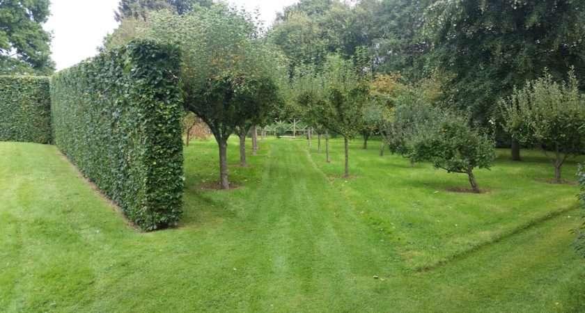 Sussex Garden Care Parkfield Landscapes