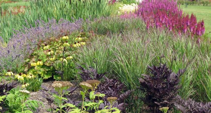 Sussex Prairie Garden Henfield