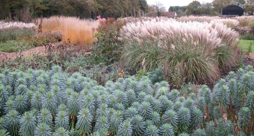 Sussex Prairie Garden November