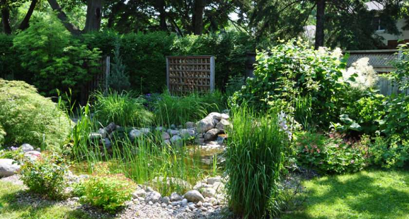 Three Dogs Garden Pin Ideas Small Water Features Ponds