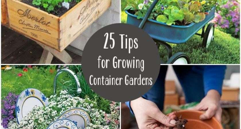 Tips Growing Container Gardens