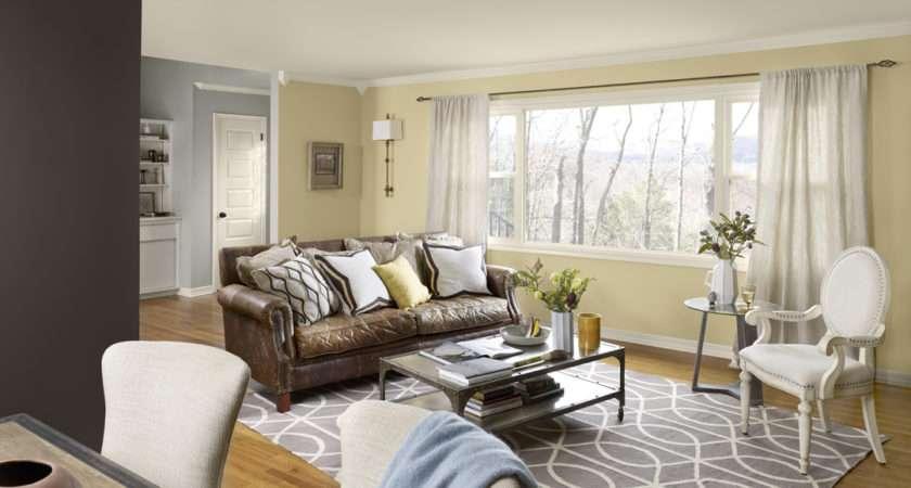 Tips Living Room Color Schemes Ideas Midcityeast