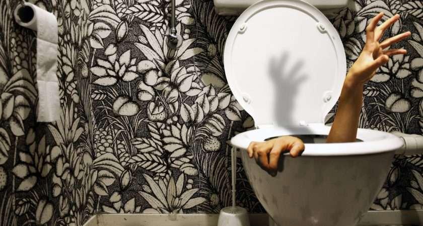 Toilet Best Funny