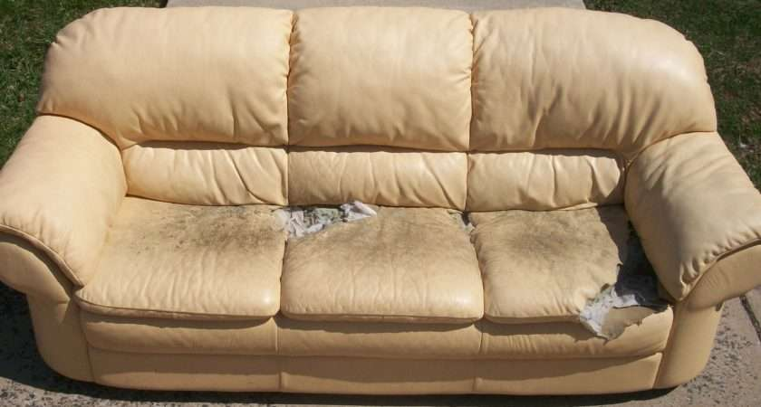 Upholster Leather Sofa Reupholster
