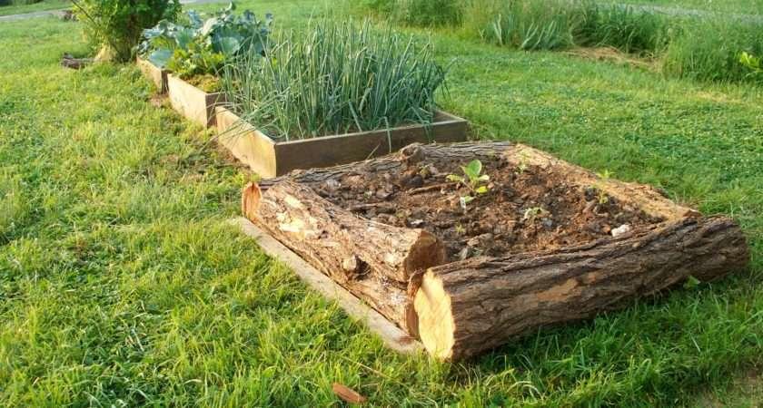 Vegans Living Off Land Raised Bed Garden Ideas