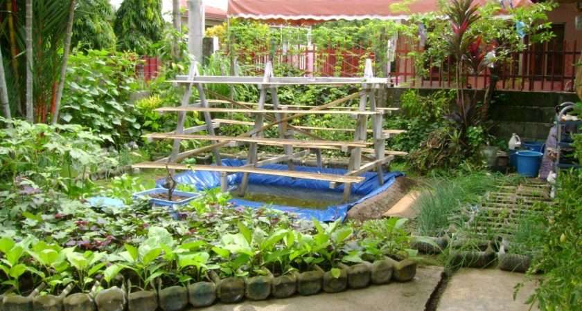 Vegetable Garden Designs Small Yards Ideas Hometowntimes