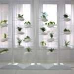 Vertical Garden Danielle Trofe