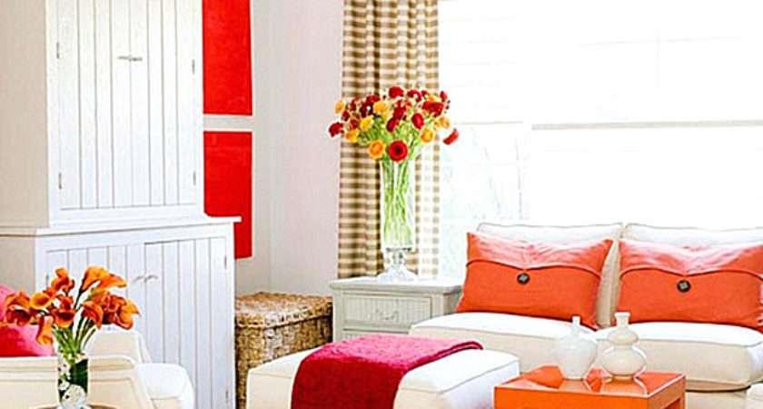 Vivid Design Top Color Trends