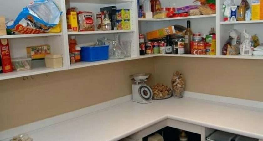 Walk Pantry Ideas Small Dazzling