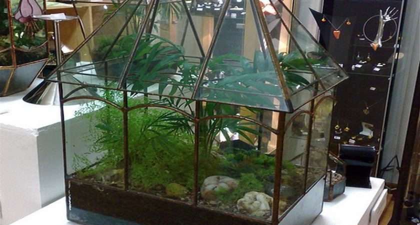 Wardian Case Botanical Home Decor Your Dream