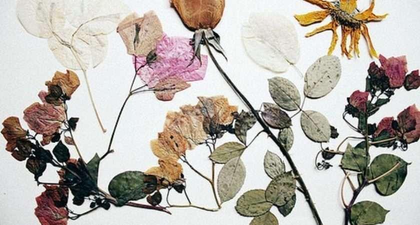 Ways Decorate Dried Flowers