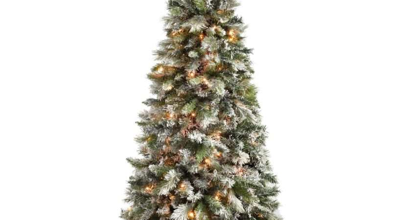 Werchristmas Pre Lit Slim Snow Flocked Spruce Multi