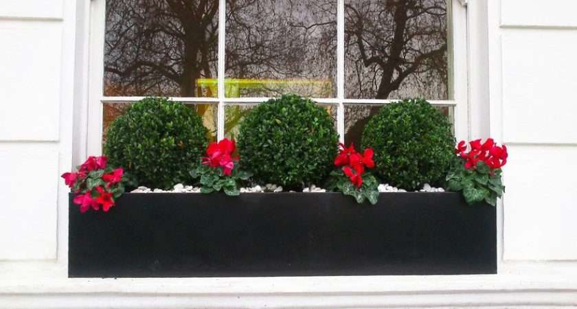 Window Boxes London Design Installation Maintenance