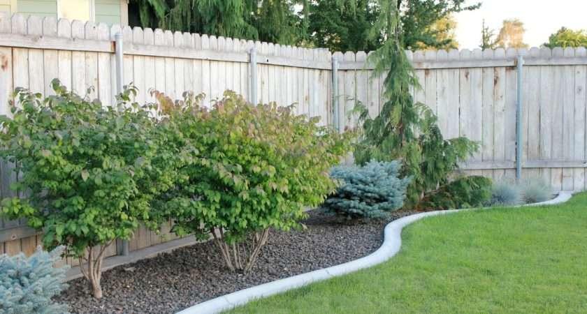 Yes Landscaping Custom Front Yard Ideas Level